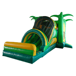 Tropical 5-in-1 Combo bouncer rental