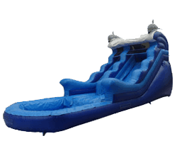 Dolphin Wet/Dry Slide Rental
