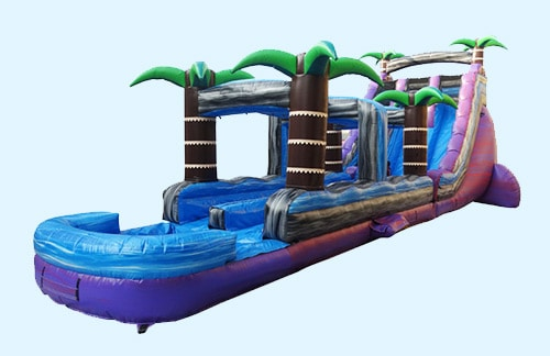 Image of Purple Plunge Water Slide rental