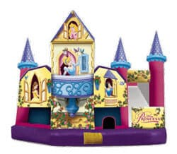 Image of Bounce House Combo rental in Lakeland FL