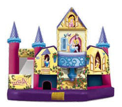 WaCombo slde and bounce house rental in New Tampa, FL